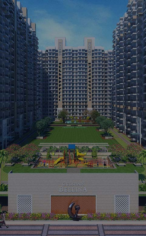 Best Developer in Noida